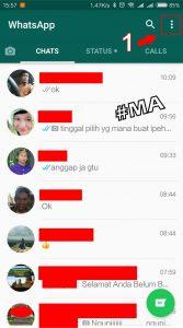 Versi Whatsapp Mengembalikan Pesan 1