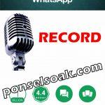 Kenapa Whatsapp Tidak Bisa Kirim Pesan Suara?