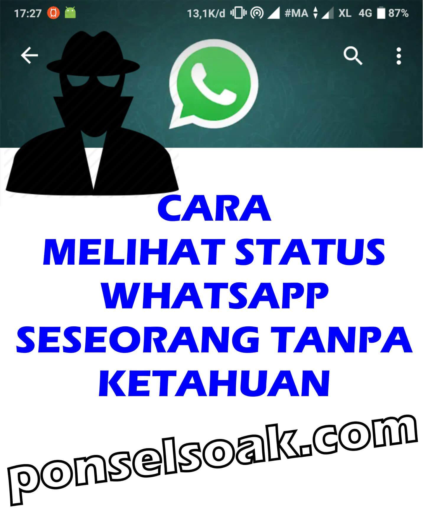 Cara Melihat Status WhatsApp Seseorang Tanpa Ketahuan