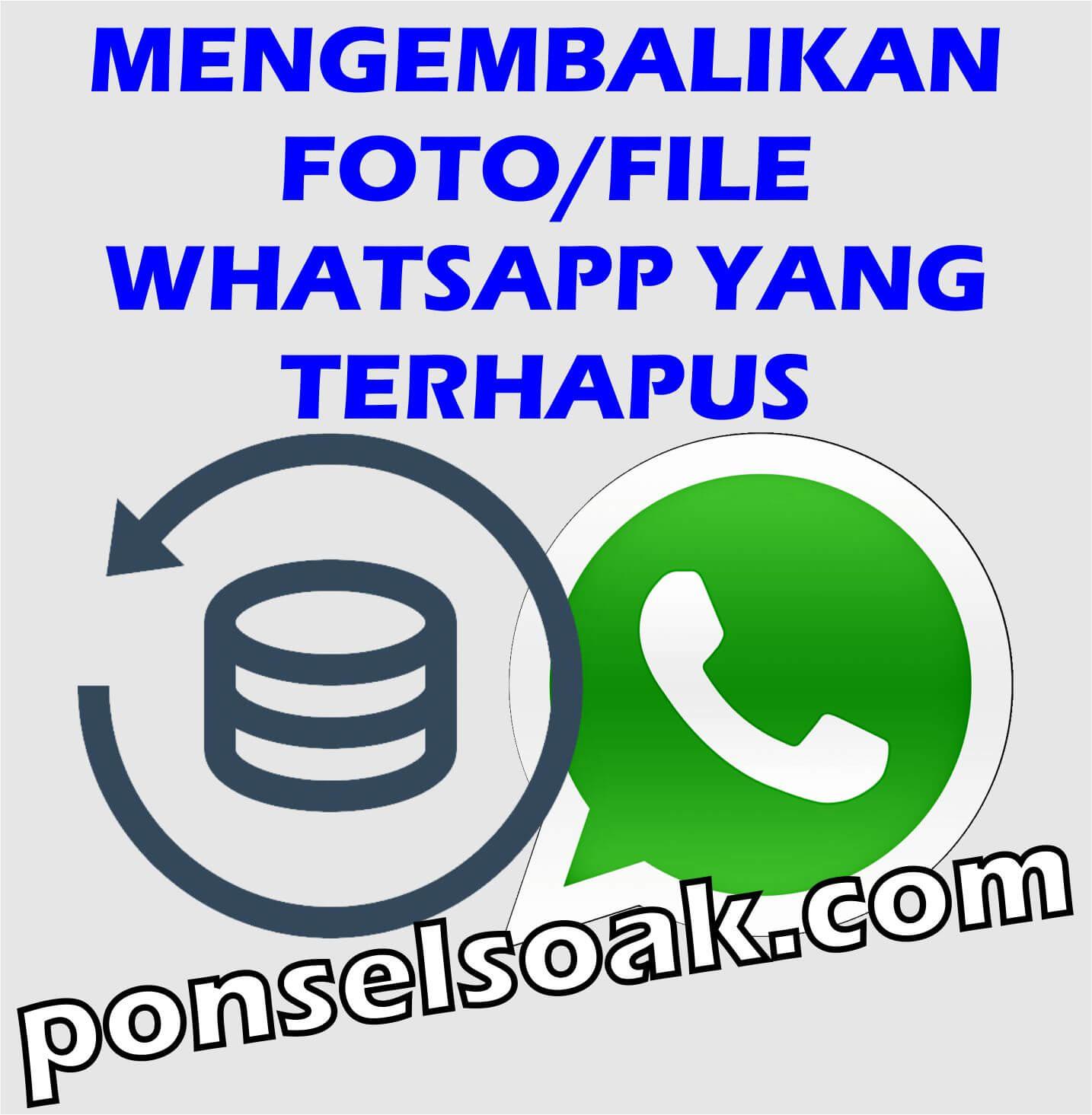 Cara Mengembalikan Foto or File Whatsapp Yang Terhapus